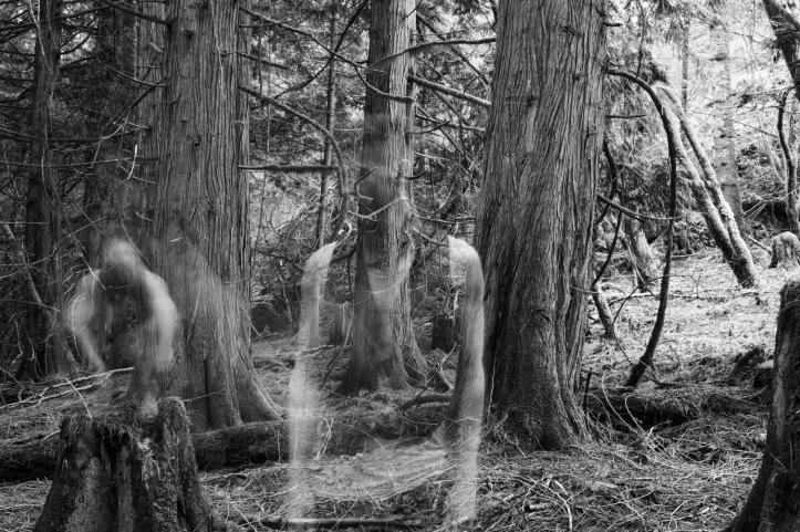 Ayrdri - ghost
